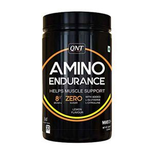 QNT Amino Endurance