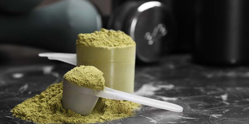 buy plant based protein or vegan protein powder online in India